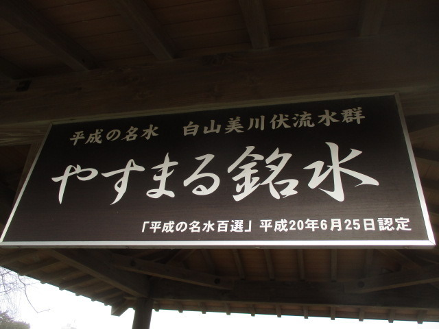 IMG_9650.JPG